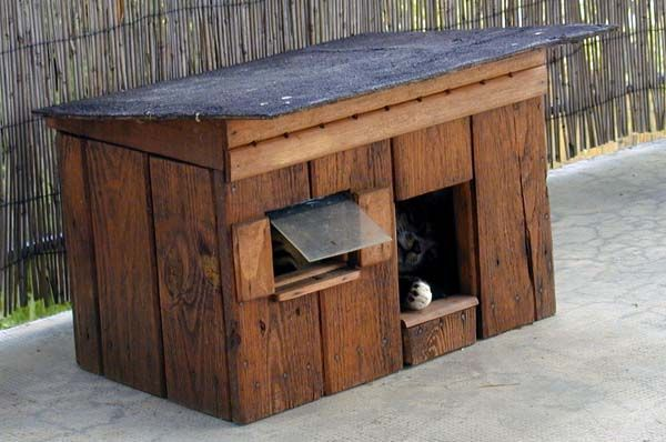 cabane a chat