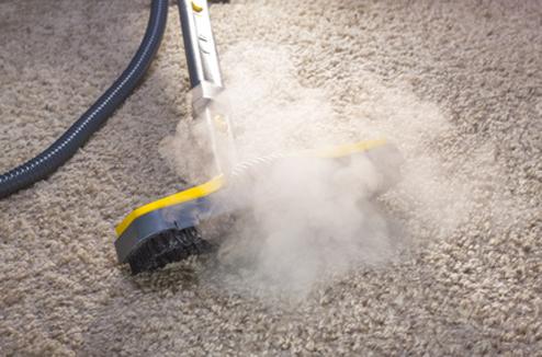 nettoyeur vapeur tapis