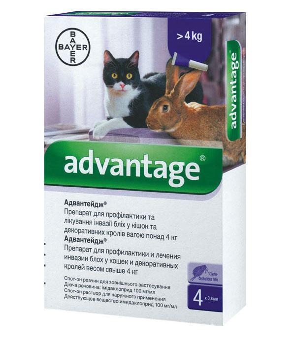 advantage 80