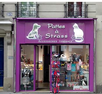 boutique de chien