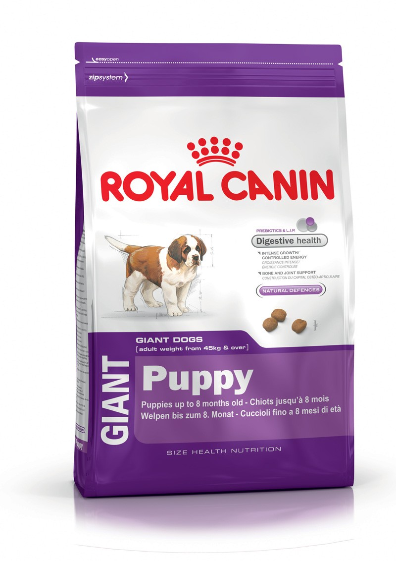 croquette royal canin chien