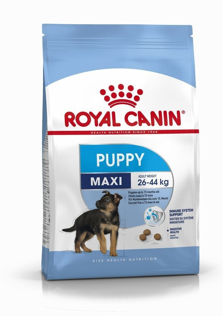 croquette royal canin maxi junior