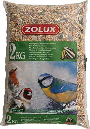 graines pour oiseaux