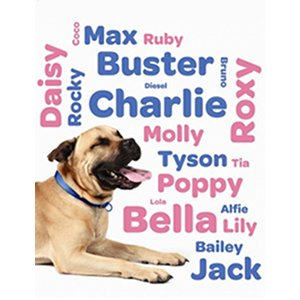 prenom de chien
