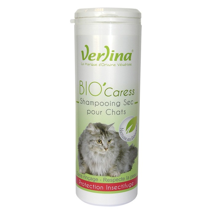 shampoing sec pour chat